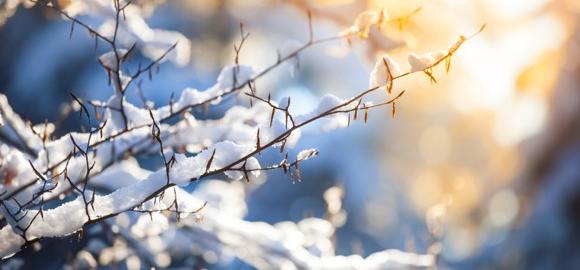 Trucs et astuces pour passer un bel hiver!